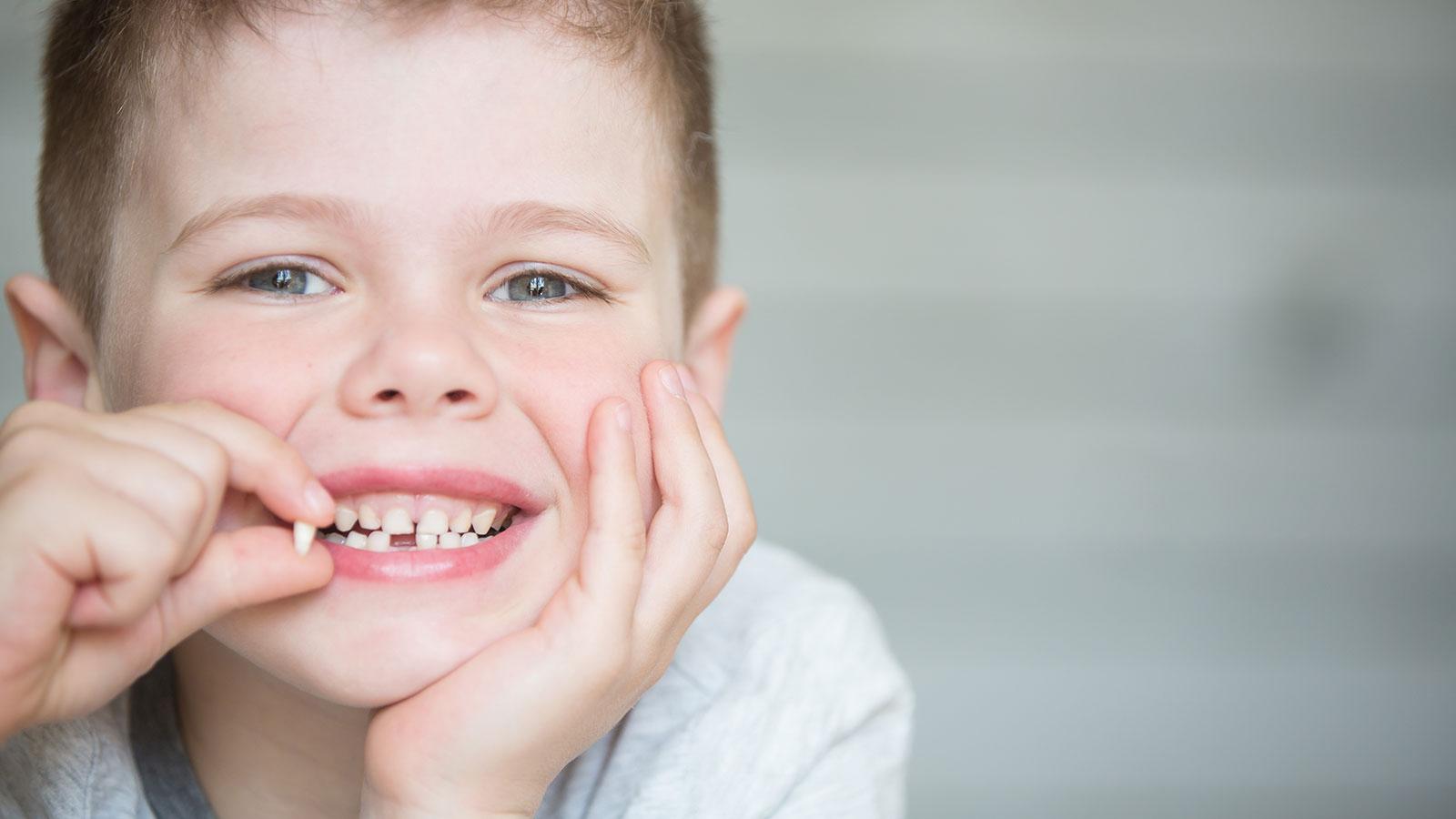 Dobler Strehler Zahn